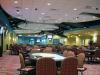 Best Bet Jacksonville Orange Park Kennel Club