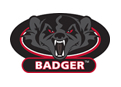 Badger Fire
